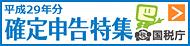 『平成29年分確定申告』の画像