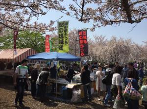 『『『H30.4.1小松川千本桜まつり(1)』の画像』の画像』の画像