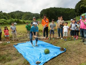 『H30.9.9稲刈りツアー(2)』の画像