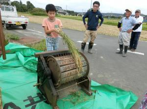 『2019稲刈り粟(3)』の画像