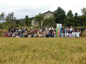 『2019稲刈り粟(4)』の画像