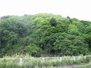 『NO3上入野』の画像