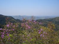 鶏足山頂からの眺望(春)