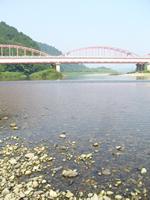 那珂川の清流