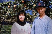 『宮本観光果樹園』の画像
