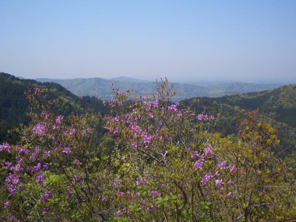 『鶏足山からの眺め』の画像